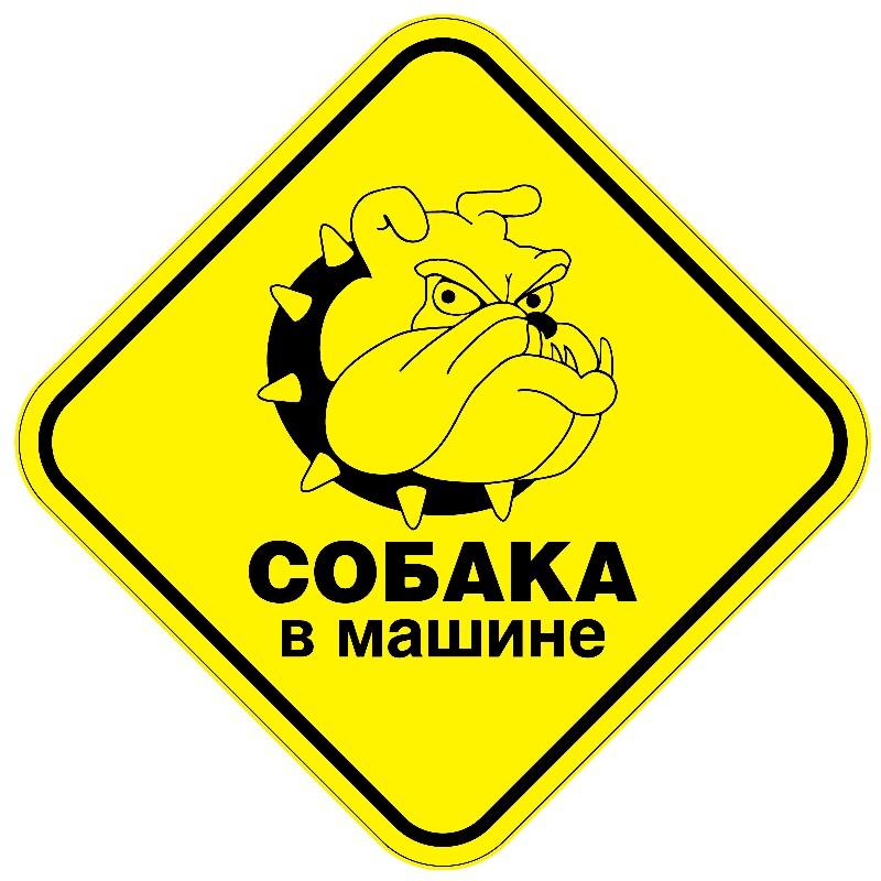 """EXPERT Знак """"Собака в машине"""" наклейка"""